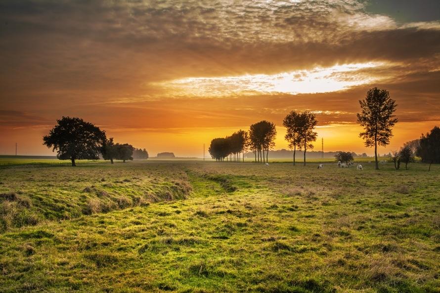 landscape-nature-sunset-clouds-large