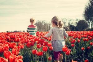 children-in-tulip-field