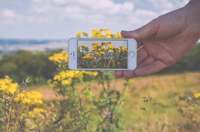 hand-apple-camera-field