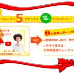 【今だけ】オンラインレッスン5点セットプレゼント!